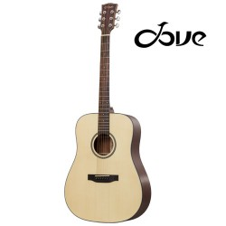 Dove DD-120 Western Guitar
