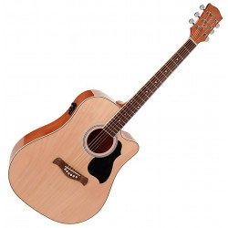 Richwood RD-12CE Artist Series Western guitar