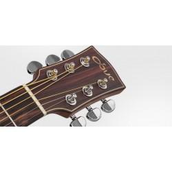 Dove DJ-220 Western Guitar Jumbo