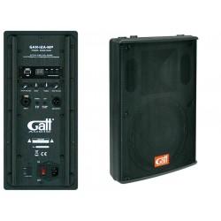 Gatt Audio GAN-12AMP