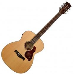Richwood A-20E Master Series Western guitar