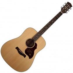 Richwood D-20 Master Series Dreadnought Western guitar