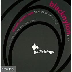 Gallistrings G77 Black Nylon bass 55-115