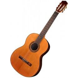 Salvador Cortez CC15 Student 4/4 Natural Klassisk/Spansk Guitar Front