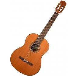 Salvador Cortez CC22 Klassisk guitar Angled