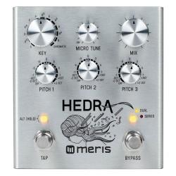 Meris Hedra pitch