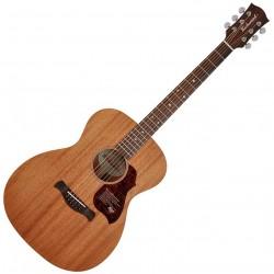 Richwood A-50 Western guitar