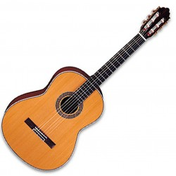 Greg Bennett C-4 Western Guitar