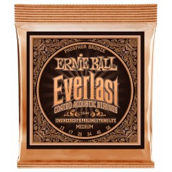 Ernie Ball EB-2550 Everlast Phos. Bronze Extra Light 10-50 Westernstrenge front