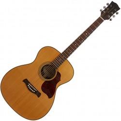 Richwood A-65-VA Western guitar front