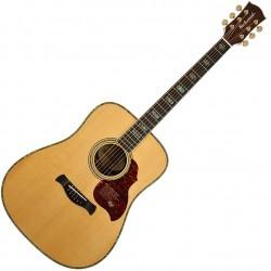 Richwood D-70-VA Western guitar front