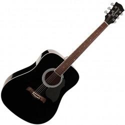 Richwood RD-12 Western guitar sort front