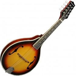 Richwood RMA-60-VS Master Series mandolin front