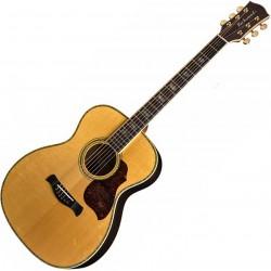 Richwood A-70-VA Western guitar angled
