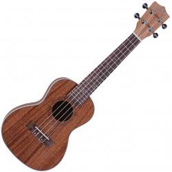 Santana 35C Concert-ukulele front