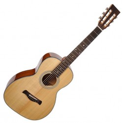Richwood P-40 Parlour guitar