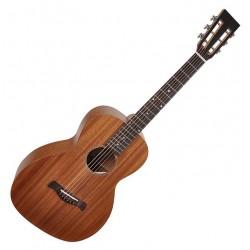 Richwood P-50 Parlour guitar