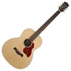 Richwood B-20 Bariton Acoustic guitar