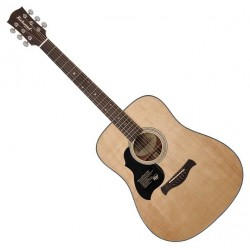 Richwood D-40L Western guitar (Venstrehånd)