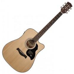 Richwood D-65-VA Western guitar