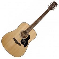 Richwood D-40 Western guitar