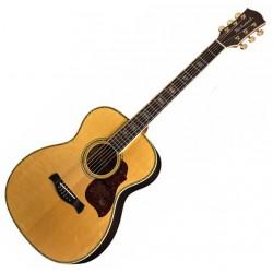 Richwood A-70-EVA håndlavet akustisk guitar front