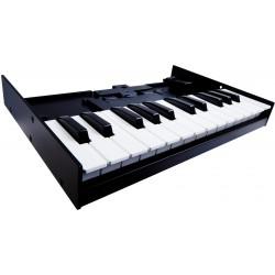 Roland K25M Keyboard