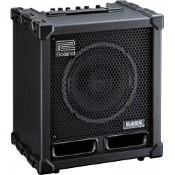 Roland CUBE-60XL Bascombo