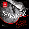 SAVAREZ Phosphore Bronze 12-53