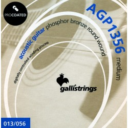 Gallistrings AGP1356 Coated Phosphor Bronze 13-56