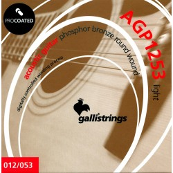 Gallistrings AGP1253 Coated Phosphor Bronze 12-53