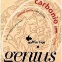 Gallistrings GR95 Genius Carbonio
