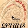 Galli GR95 Genius Carbonio Classical Guitar Normal