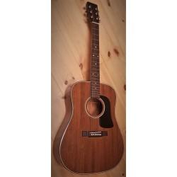 Washburn D15M Western Guitar
