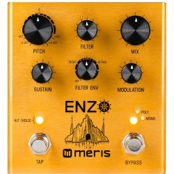 Meris Enzo Multi-Voice Guitar Synth Pedal