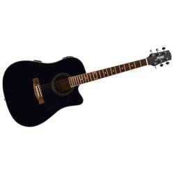 Morgan GPWD1-CEBK Western guitar