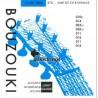 Gallistrings Bouzouki B070 Loop End