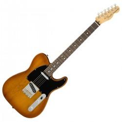 Fender AM Performer Telecaster Honey Burst RW