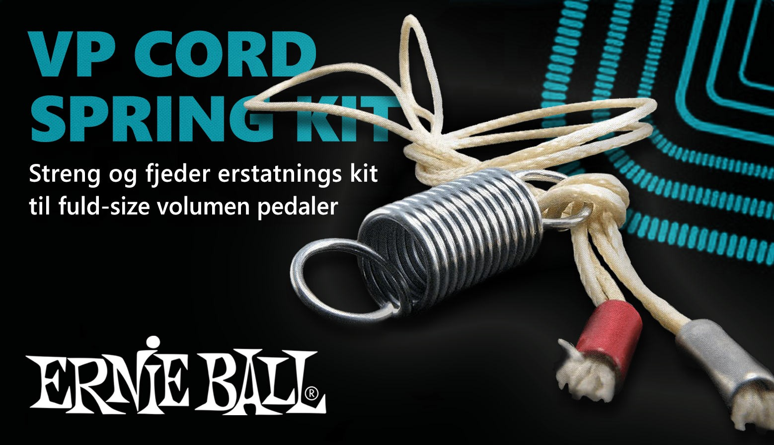 Ernie Ball VP Cord/​Spring Kit
