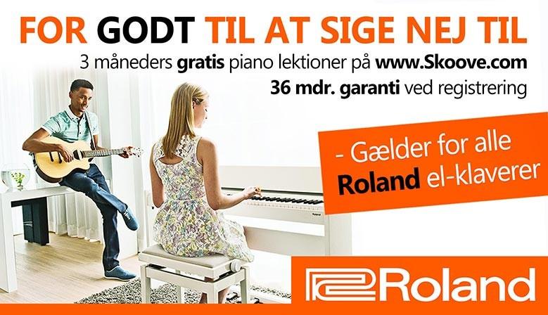 Roland kampagne Banner