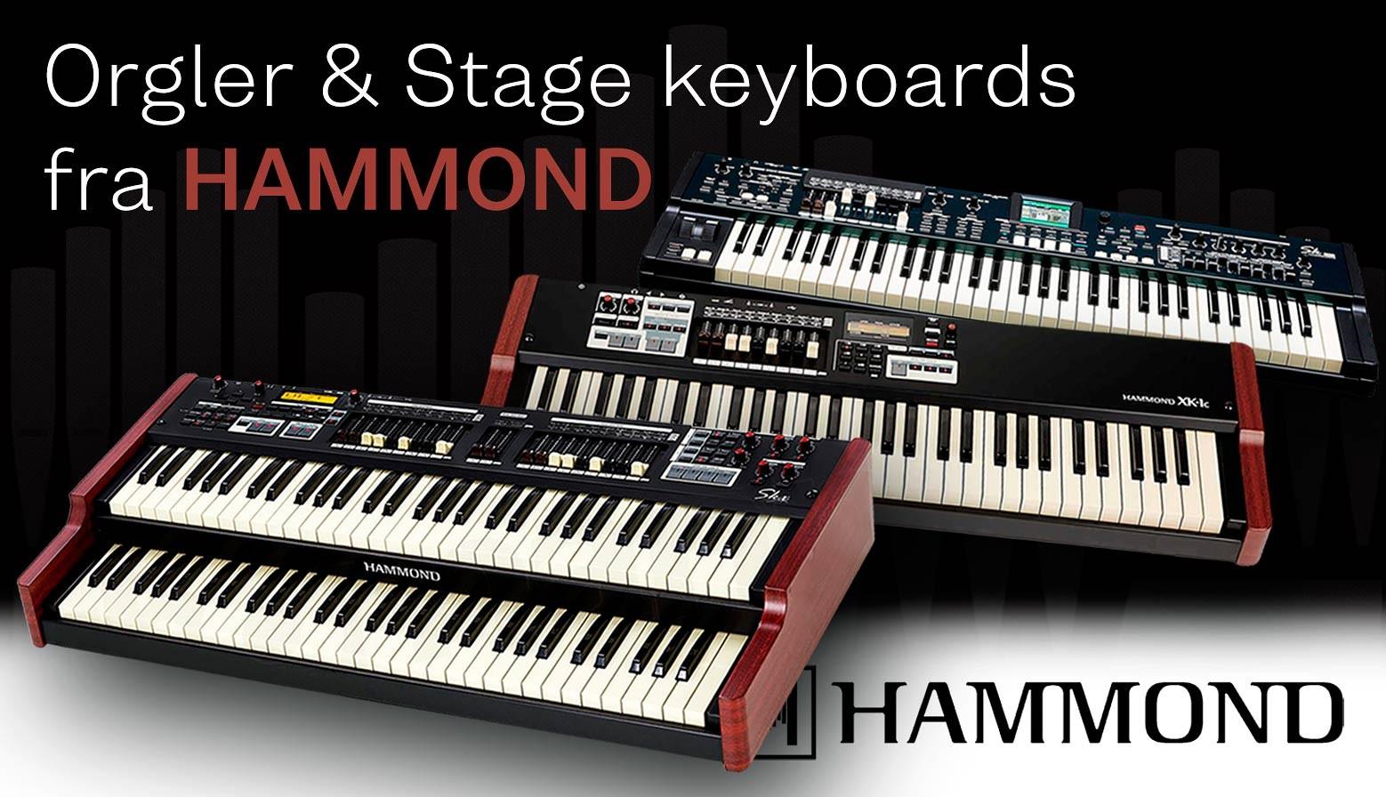 Hammond banner